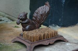 Sárkaparó mókus cipőtisztító