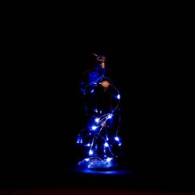 10 ledes világító palack. Hangulatos fénydekoráció a Lilapapagaj.hu lakáskiegészítő webáruháztól